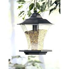 garden treasures bird seed garden treasures bird food garden treasures plastic finch sock bird feeder garden treasures bird