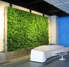 How to Care for and Maintain Living Walls: It's easy! Living Walls are  living organisms so they must be cared for, but they are designed to make  the ...