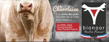 """Résultat de recherche d'images pour """"boeuf française sont halal"""""""