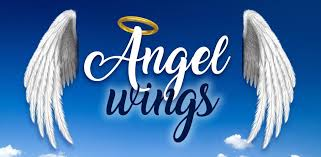 angel wings for pictures wings photo editor