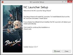 Installation Instructions – Blade & Soul Support