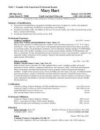 examples of resumes memoir essays mice and men prejudice essay resume examples good resume experience examples resume experience intended for example of a good resume