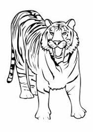 Tigre Da Colorare E Stampare Stampa Disegno Di Maschera Uomo