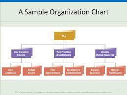 Fundamentals Of Organization Structure Ppt Download