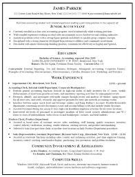 accounting resume sample  resume sample format