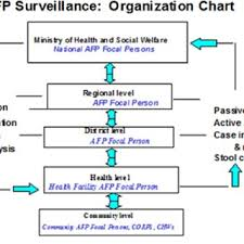 Organization Of Afp Surveillance System In Who Afr Countries