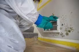vinegar or bleach to remove mold