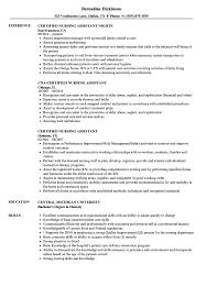 Sample Resume Certified Nursing Assistant Certified Nursing Assistant Resume Samples Velvet Jobs 60
