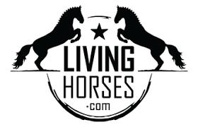 LIVING HORSES - Horse Hair Bracelets + Gifts • Graphic Design ...