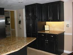 Black Kitchen Cabinets Kitchen Black Kitchen Cabinets With 20 Black Kitchen Cabinet