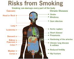 diseases associated smoking a understanding for igcse  risks form smoking smoking can damage every part of the body