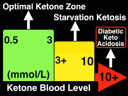 Fasting Ketosis And Fat Loss Metabolic Performance