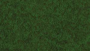 grass field from above. Grass Field Loop. Animation Of Stock Footage Video (100% Royalty-free)  2529623 | Shutterstock Grass Field From Above I