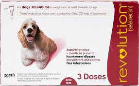 Revolution Topical Solution For Dogs 20 1 40 Lbs 3 Treatments Red Box
