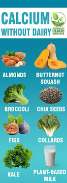Non Dairy Calcium Rich Foods Chart 29 Best Calcium Rich Foods Images In 2019 Calcium Rich