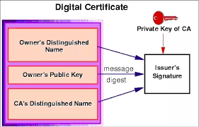 What Are Digital Certificates How Are They Created Quora