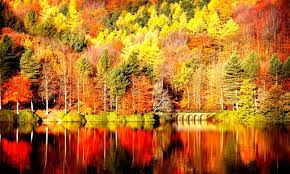Aesthetic Tumblr Autumn Desktop ...