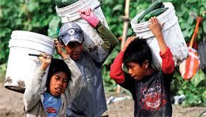Resultado de imagen de fotos de niños trabajando