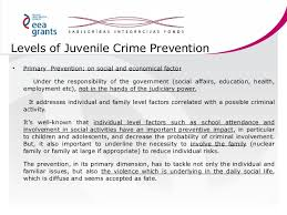 juvenile crime prevention 17 levels of juvenile crime