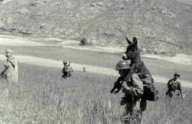 2° Guerra Mondiale; questa fotografia... - Le fotografie che hanno fatto la  storia   Facebook