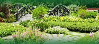 Find the best garden decor price! Professional Garden And Lawn Landscaping Services In Karachi Pakistan Greenlife