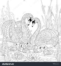 Coloring Book Page Of Swan Birds