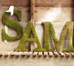 pottery barn s live moss letters
