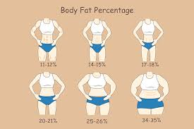 Normal Human Body Weight Chart In Kg How Much Should I Weigh Ideal Body Weight Calculator For