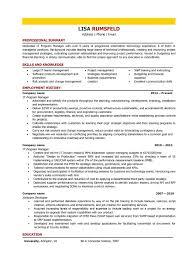 Resume It Director Resume Sample Information Technology