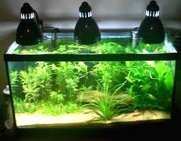 Light Requirement For Planted Aquarium Planted Tank Lighting Faq Aquatic Essentials By Myaquarium