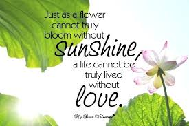 Love Flower Quotes Unique Love Is Like A Flower Quotes With Flower Love Quotes Love Quotes
