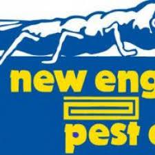 Big Blue Bug Solutions Big Blue Bug Solutions Networx