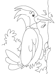 Small Picture 14 best Woodpecker Coloring Pages images on Pinterest