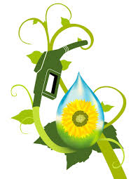 biofuels effects social economic political environmental biofuel 1