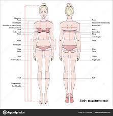 Woman Body Measurement Chart Scheme Measurement Human Body