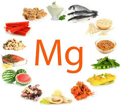 Magneesiumi puudus organismis