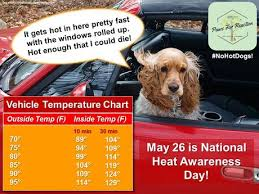 Nohotdogs Car Temperature Heatadvisory For Dogs