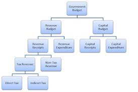 Types Of Government Chart Lovely What Is A Bud Ponents Of
