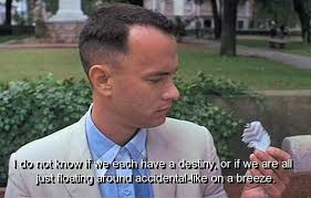 Summer Break As Told By Forrest Gump | The Odyssey