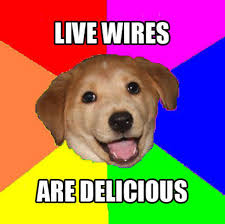 Advice Dog Template Under Fontanacountryinn Com