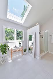 information about different kinds of skylights  diy