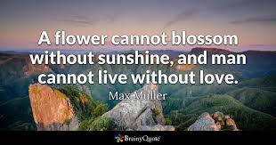 Life Without Love Quotes A flower cannot blossom without sunshine and man cannot live 45