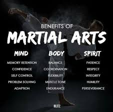 Martial Arts Quotes Impressive Pin By Rose Steinke On Martial Arts Pinterest Martial Jiu Jitsu