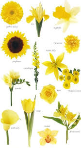 types of flowers in bouquets. vibrant and fun or subtle sweet types of flowers in bouquets