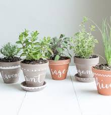 apartment herb garden. 10 Tiny Herb Garden Ideas That Will Fit In Any Apartment N