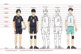 Haikyuu Height Chart