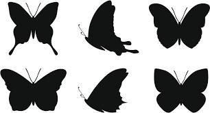 Simple Butterfly Shapes By Akirastock