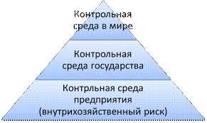 Контроль Контрольная среда Студопедия В современном понимании контроль это функция управления сущность которого состоит в оперативном выявлении отклонений фактических показателей деятельности