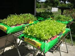 garden in a bag. Raised Herb Garden In A Bag