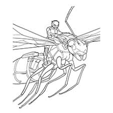 Small Picture 10 Printable Ant Man Coloring Pages For Toddlers